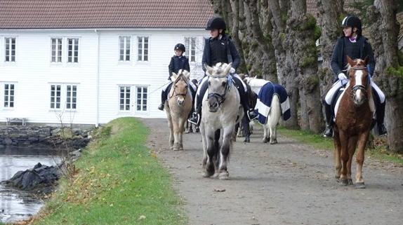 Sætregården Hestesportsklubb